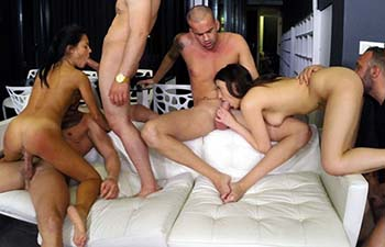 Claudia Bavel and apolina orgy cumloader